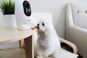 Pawbo Wi-Fi Pet Camera, 720p Interactive Wireless